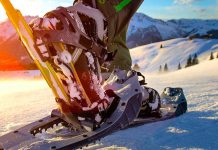 SnowShoeings in Whistler Ski Experience