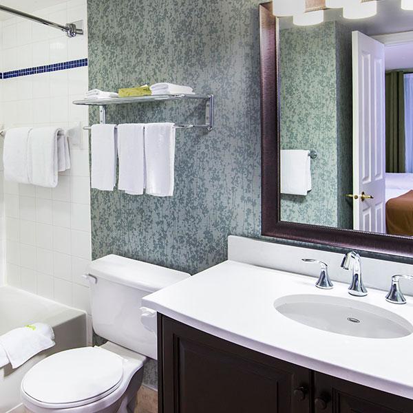Mont Tremblant Holidat Inn hotel bathroom